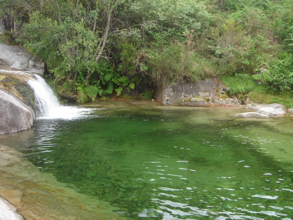 Aguas limpias y claras procedentes de la montaña